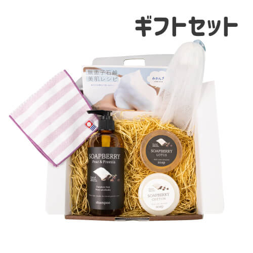 SOAPBERRY soap & shampoo gift 古宝無患子ギフトセット